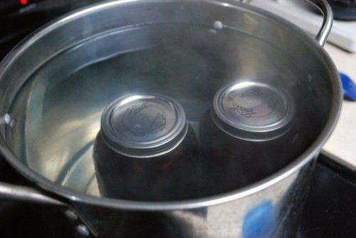 When processing the jars, make sure you have boiling water and that the jars are completely submerged.
