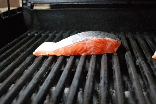 Salmon Flesh Side Down