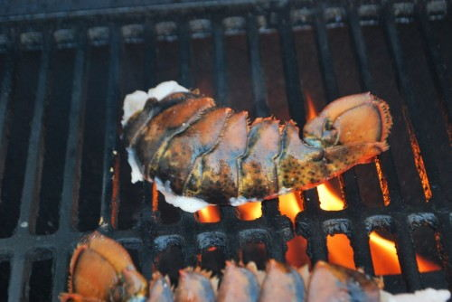 Lobster meat side down