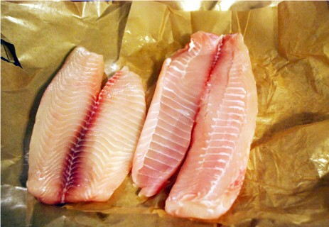 Beautiful Tilapia Fillets