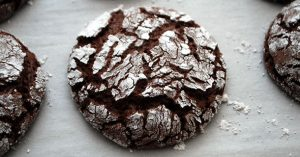 Fudge Crinkle Cookie