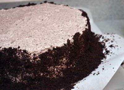 Surround the cake with the crushed oreos.